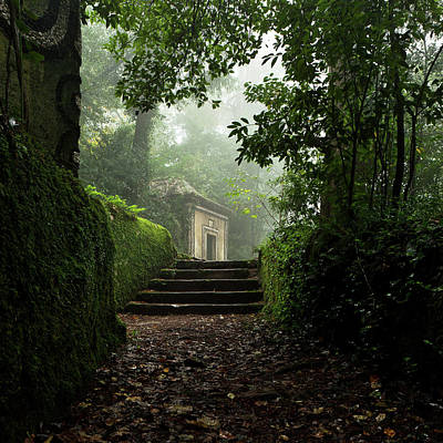 Photograph - Neverland by Jorge Maia