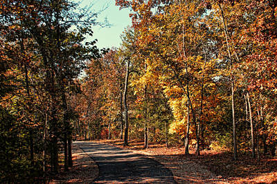 Photograph - New Autumn Trail by Rick Friedle