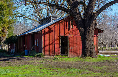 Photograph - New Clairvaux Abbey Barn by Tikvah's Hope