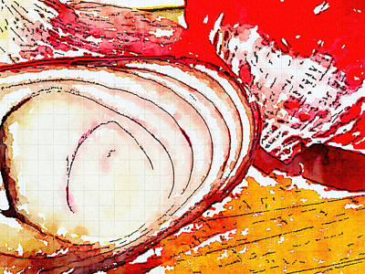 Photograph - New Cut Onion by Ronda Broatch