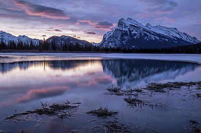 Photograph - New Dawn by Celine Pollard