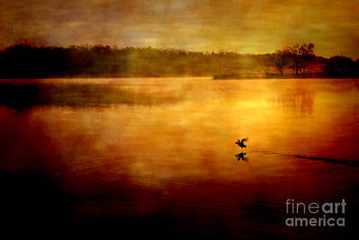 New Day Surrounded By Nature Art Print by Iris Greenwell