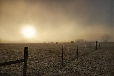 New Day Through The Fog Print by Mike Eingle