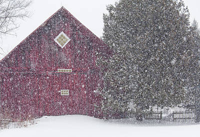 Photograph - New England Blizzard by Alan L Graham