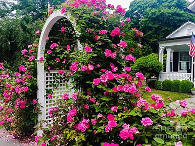 Photograph - New England Charms by Beth Saffer