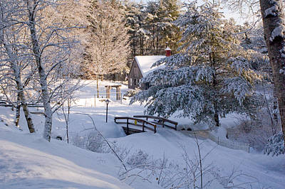 New England House And Forest In The Snow Art Print by David Thompson