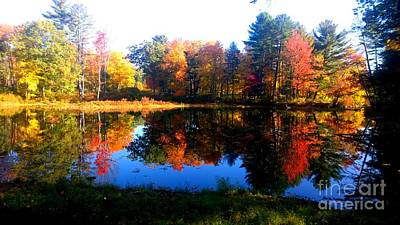 Photograph - New England In Autumn by Eunice Miller
