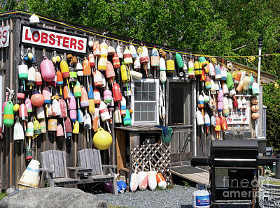 Photograph - New England Lobster Shack by Cathy Donohoue