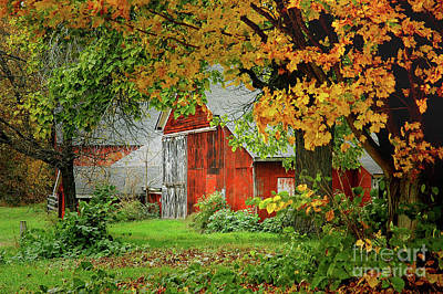 Photograph - New England Rustic - New England Fall Landscape Red Barn by Jon Holiday
