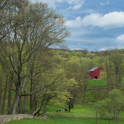 Photograph - New England Spring 2017 by Bill Wakeley