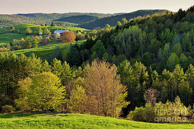 Photograph - New England Spring by Alan L Graham