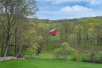Art Print featuring the photograph New England Spring Pasture by Bill Wakeley