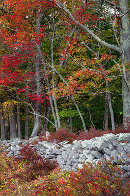 Stonewall Photograph - New England Stonewall by Bill Wakeley