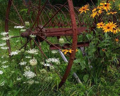 Antique Hay Rake Photograph - New England Summer Wild Flowers by Bill Wakeley