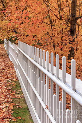 Fall Foliage Photograph - New England White Picket Fence With Fall Foliage by Edward Fielding