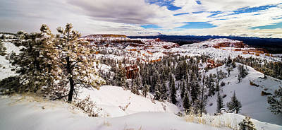 New Fallen Snow On Boat Mesa - Bryce Canyon Art Print by TL Mair