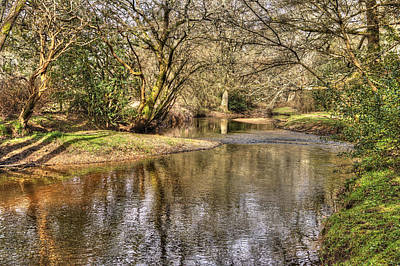 Photograph - New Forest Waters by Hazy Apple
