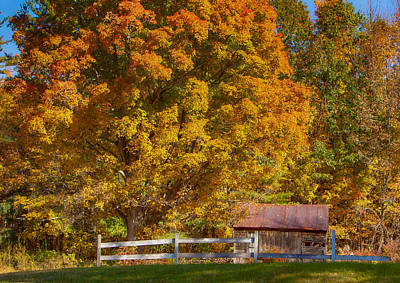 New Hampshire Barn Under Fall Foliage Art Print by Jeff Folger