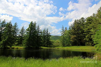 Photograph - New Hampshire Pond Landscape  by Neal Eslinger