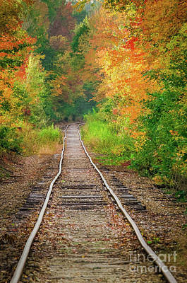 Photograph - New Hampshire Train Tracks To Foliage by Mike Ste Marie