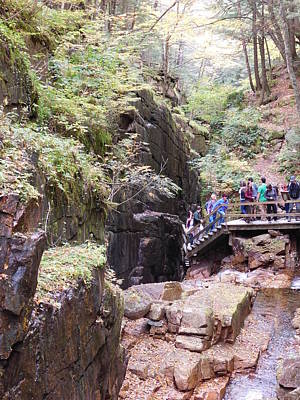 Photograph - New Hampshires Flume Gorge by Catherine Gagne