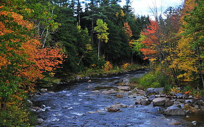Photograph - New Hampshire's Wildcat River by Brian Hoover