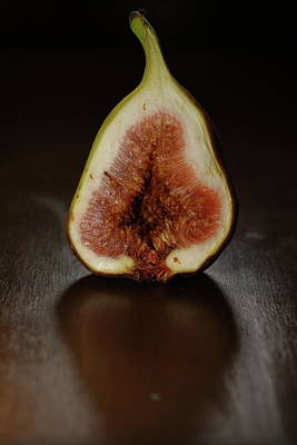 Photograph - Life Of Fig by Hyuntae Kim