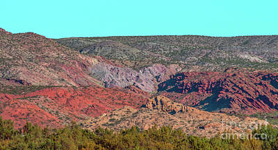 Photograph - New Mexico Artist Palette by Steve Whalen