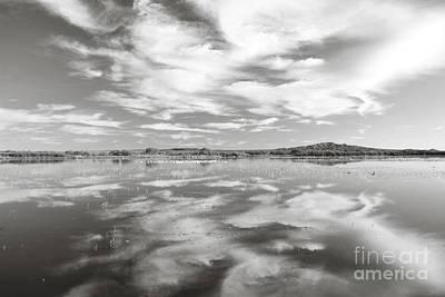 New Mexico Bosque Del Apache Lake Clouds Black And White Landscape Art Print by Andrea Hazel Ihlefeld