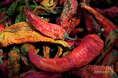 Photograph - New Mexico Chili Peppers by Sharon Foelz