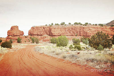 Photograph - New Mexico Jemez Mountain Red Rock Countryside by Andrea Hazel Ihlefeld
