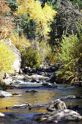 Photograph - New Mexico Jemez Mountains Stream Landscape by Andrea Hazel Ihlefeld