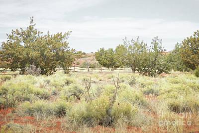 Photograph - New Mexico Rustic Jemez Mountain Desert Landscape by Andrea Hazel Ihlefeld