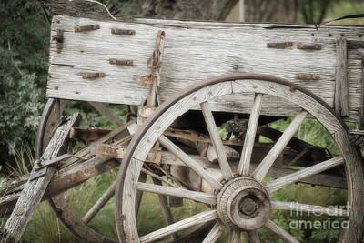 Photograph - New Mexico Rustic Wagon Wheel Landscape by Andrea Hazel Ihlefeld