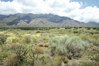 Photograph - New Mexico Sandia Mountains Foothills Spring Landscape by Andrea Hazel Ihlefeld