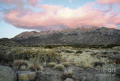 Photograph - New Mexico Sandia Mountains Foothills Sunset Landscape by Andrea Hazel Ihlefeld