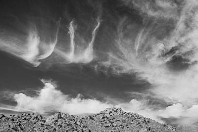 Photograph - New Mexico Sky by Amanda Rimmer