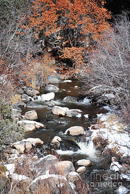 Photograph - New Mexico Snow Creek Landscape by Andrea Hazel Ihlefeld
