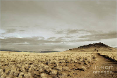 Photograph - New Mexico Volcano Trail Landscape by Andrea Hazel Ihlefeld