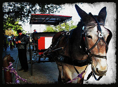 Digital Art - New Orleans Carriage Ride by Joan  Minchak
