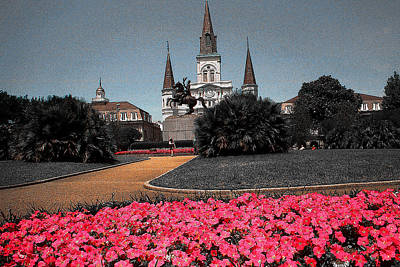 Drawing - New Orleans Cathedral With Pink Flowers by Peter Potter