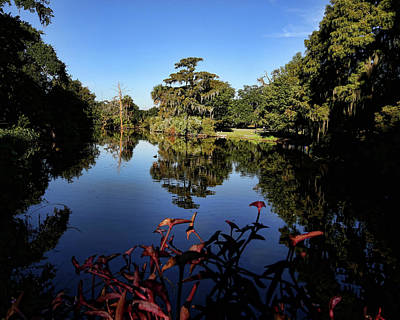 Movies Star Paintings - New Orleans City Park Reflections 1 by Judy Vincent