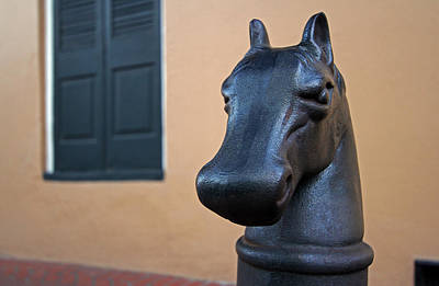 Photograph - New Orleans Horse Head Hitching Post by Juergen Roth