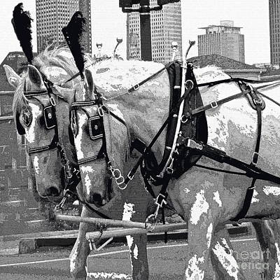 Photograph - New Orleans Horses by Saundra Myles