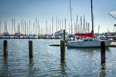 Photograph - New Orleans Municipal Yacht Club by Kathleen K Parker