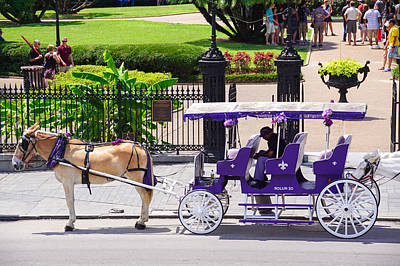 Louisiana Photograph - New Orleans Royal Carriage by Susan Bordelon