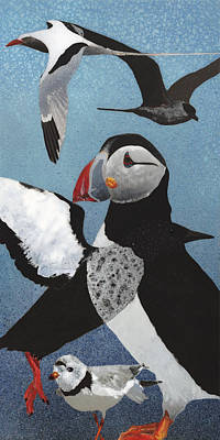 Sea Birds Painting - New Puffin I by Fred Chuang