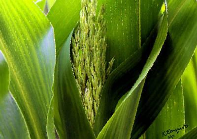 Agriculture Digital Art - New Silk by Kristin Elmquist