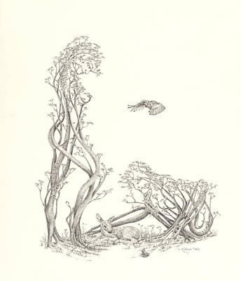 Toronto Artist Drawing - New Spring by Mark Johnson