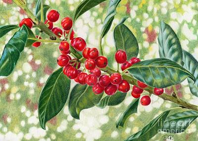 Berry Drawing - Berries by Diana Ranstrom